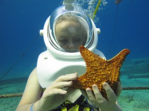 Starfish gazing