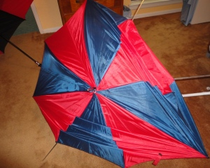 My sad Un-Umbrella!