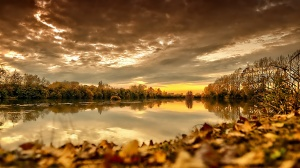 Autumnyello