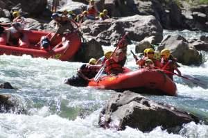 Shurea Rescue